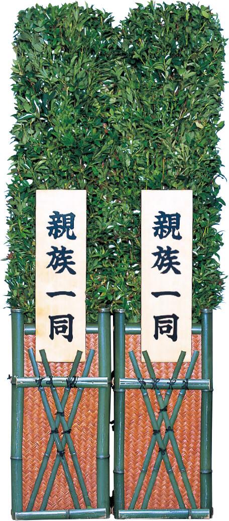 梵天樒(小・中・大)